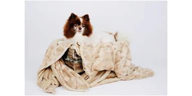 Velvet Blanky Pet Blanket