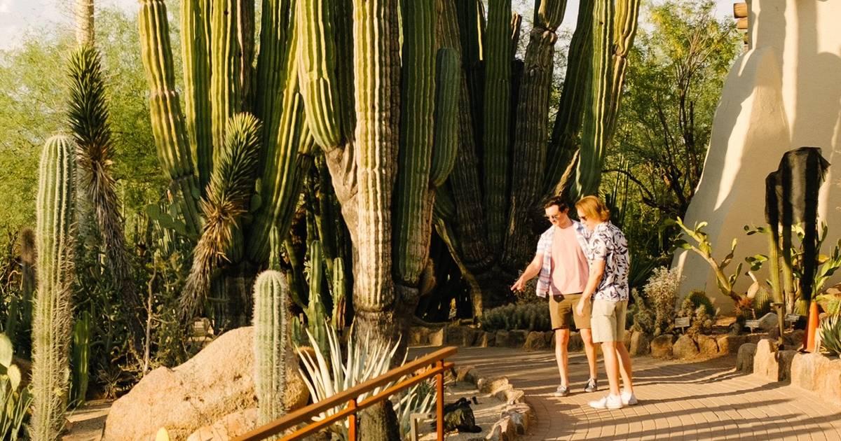 Best Date Ideas In Phoenix Fun Date Activities Romantic Date Spots Thrillist