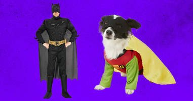 Batman and Robin dog and owner costume