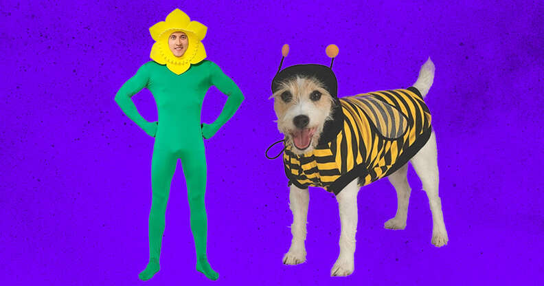 flower and bee costume for adult and dog