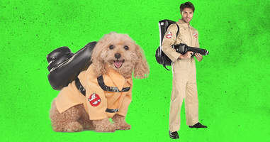ghostbusters dog and adult matching costumes