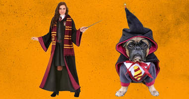 Harry Potter costumes for dogs and owners