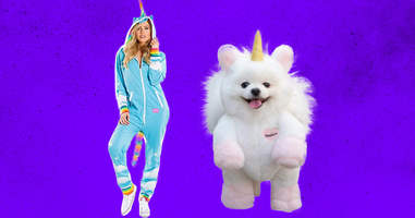 Unicorn costumes for owner and dog