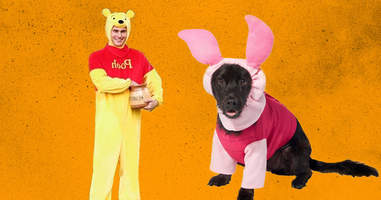 Pooh and Piglet dog and owner costume