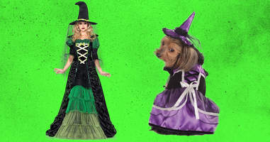 Cute witch costumes for dog and owner