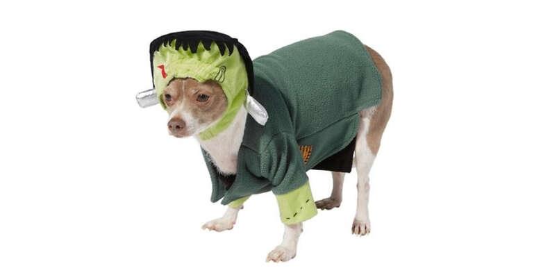 Frankenstein Dog costume