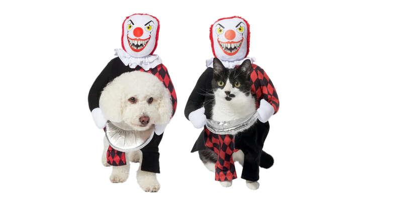 Deadly killer clown dog costume