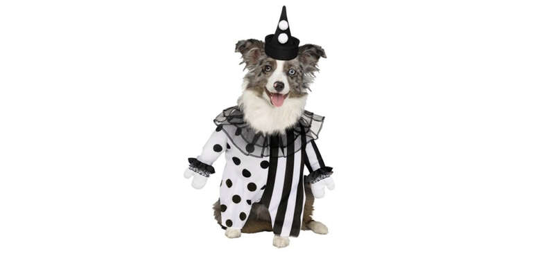 Killer Clown Dog Costume