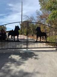 pit bull gate