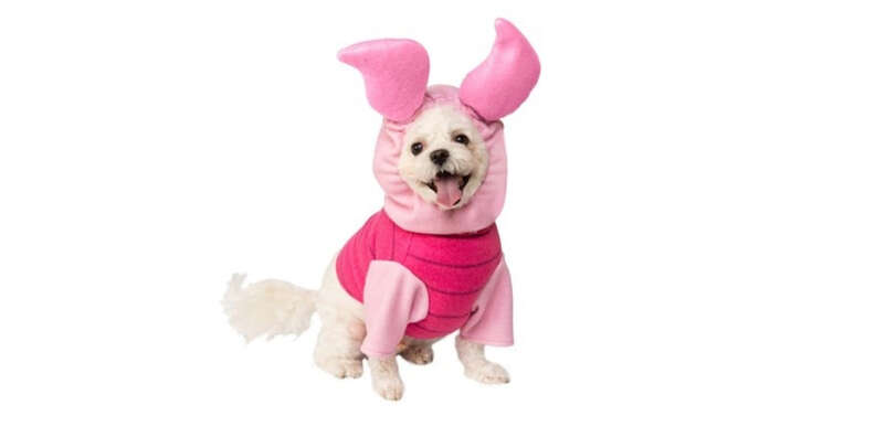 piglet costume for dogs