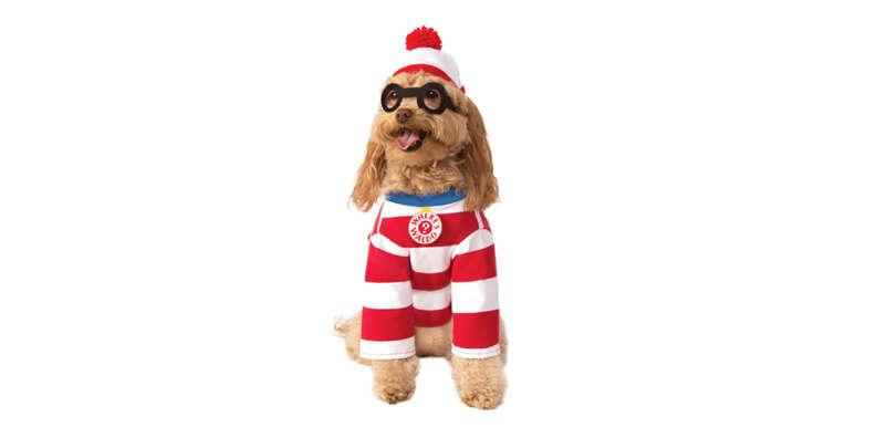 Where's Waldo dog halloween costume