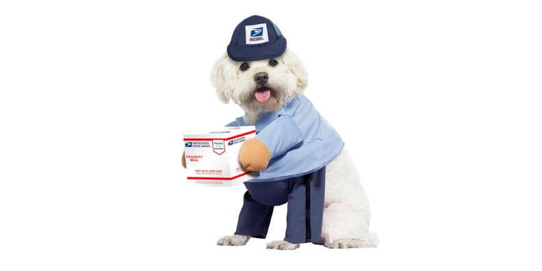 mailman dog halloween costume