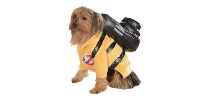 dog in a ghostbusters costume