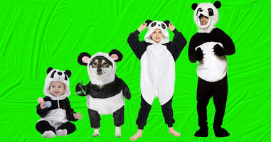 Panda Family Costume