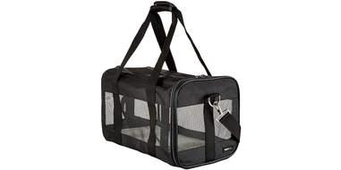 soft mesh travel carrier