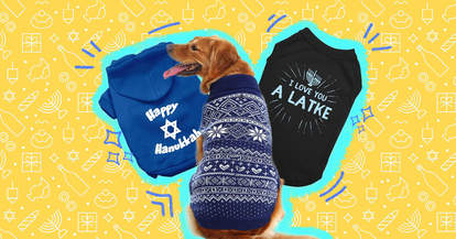 8 dog hanukkah sweaters