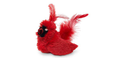 cardinal toy for cats