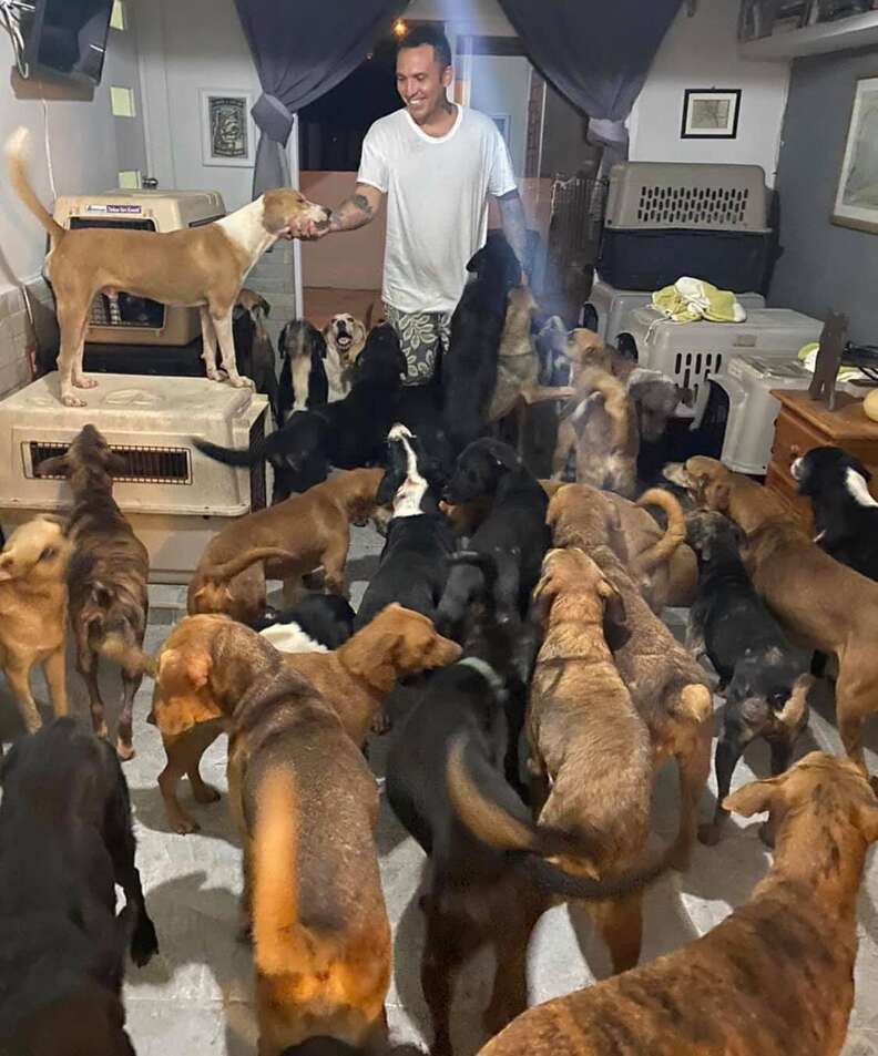 Man saves 300 dogs from hurricane in mexico
