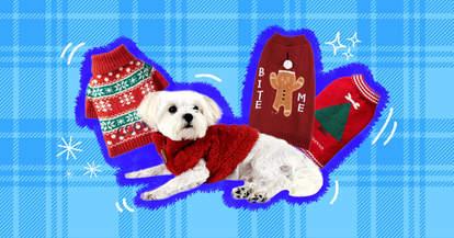 cute christmas dog sweaters