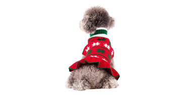 A festive turtleneck sweater dress for dogs