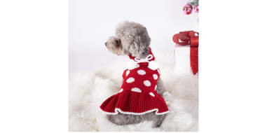 polka dot sweater dress for dogs