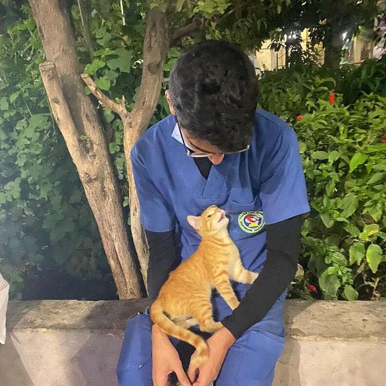 Stray cat cuddles up to nurse