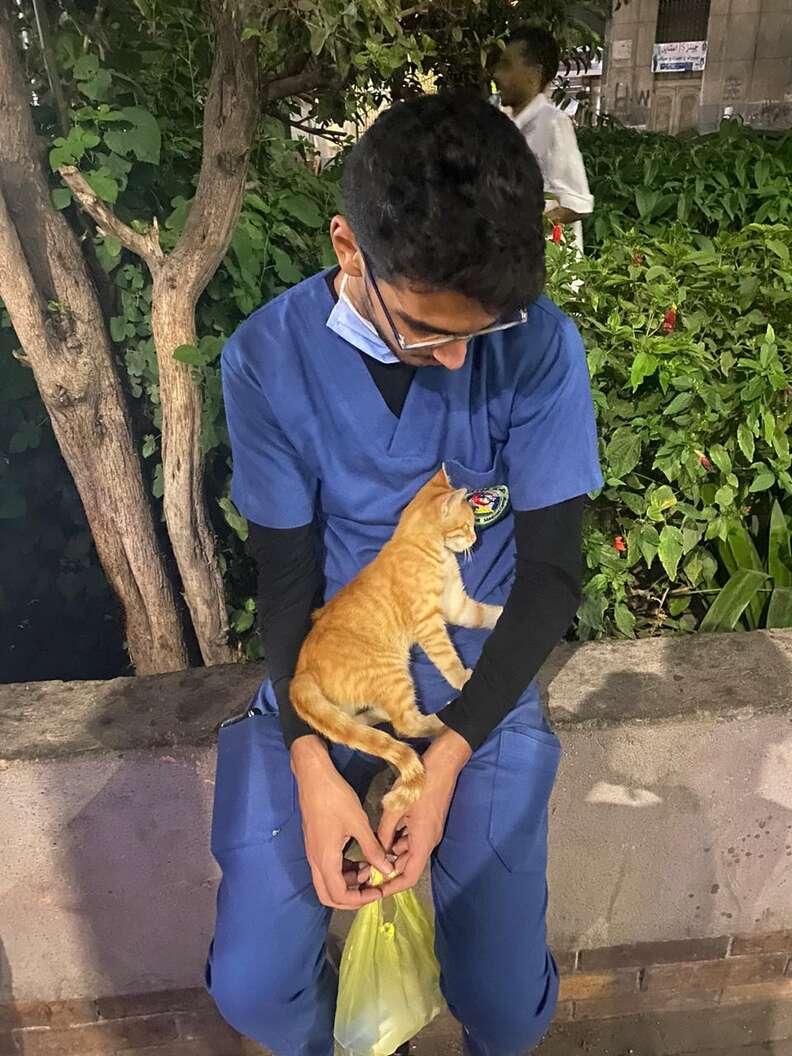 Stray cat sleeps on nurse's lap