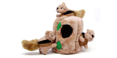 Outward Hound Hide-A-Squirrel Plush Dog Toy