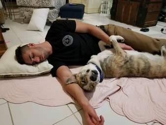 dog sleeping next to dad