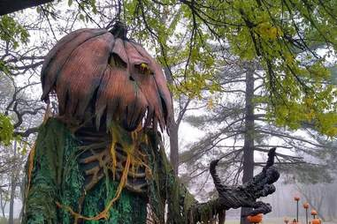 Terror In The Timbers