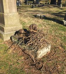 People leave sticks on dog grave