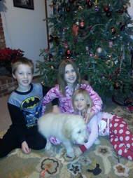 dog and kids at Christmas