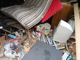 Stray puppy hides under mattress