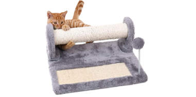 PAWZ Road Cat Scratching Post and Pad