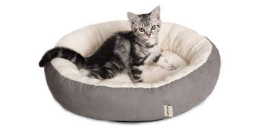 Tempcore Cat Bed for Indoor Cats
