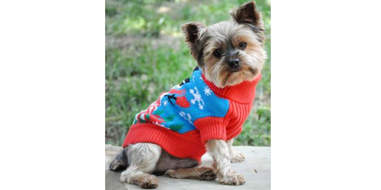 ugly christmas sweaters for dogs