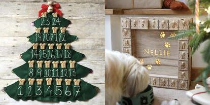 dog advent calendars