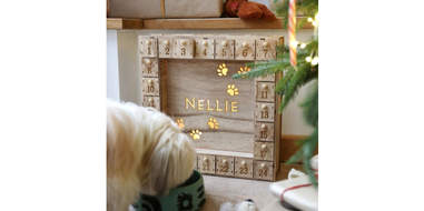 Personalized Wooden Pet Advent Calendar Light Box