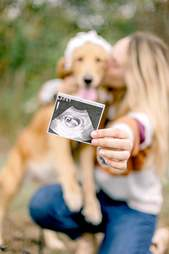 Rescue dog gets pregnancy photoshoot