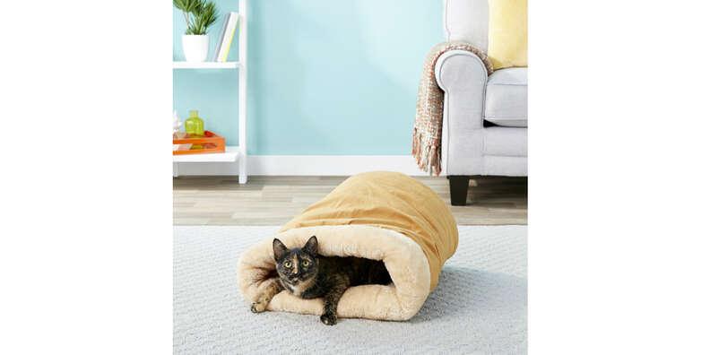 best cat bed cozy