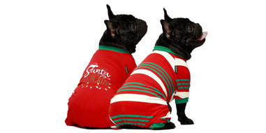 Fitwarm Dear Santa I Can Explain 2-Pack