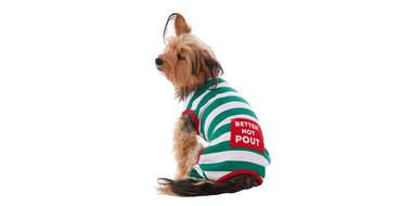 Merry & Bright™ Green & White Stripes dog Pajamas