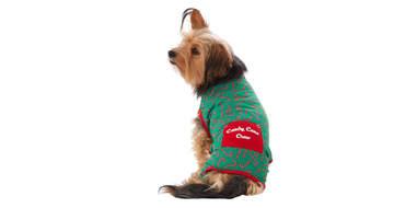 Merry & Bright™ Holiday Candy Cane Pet Pajamas