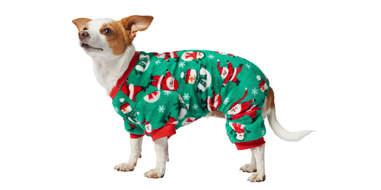 Frisco Jolly Christmas Cozy Fleece PJs