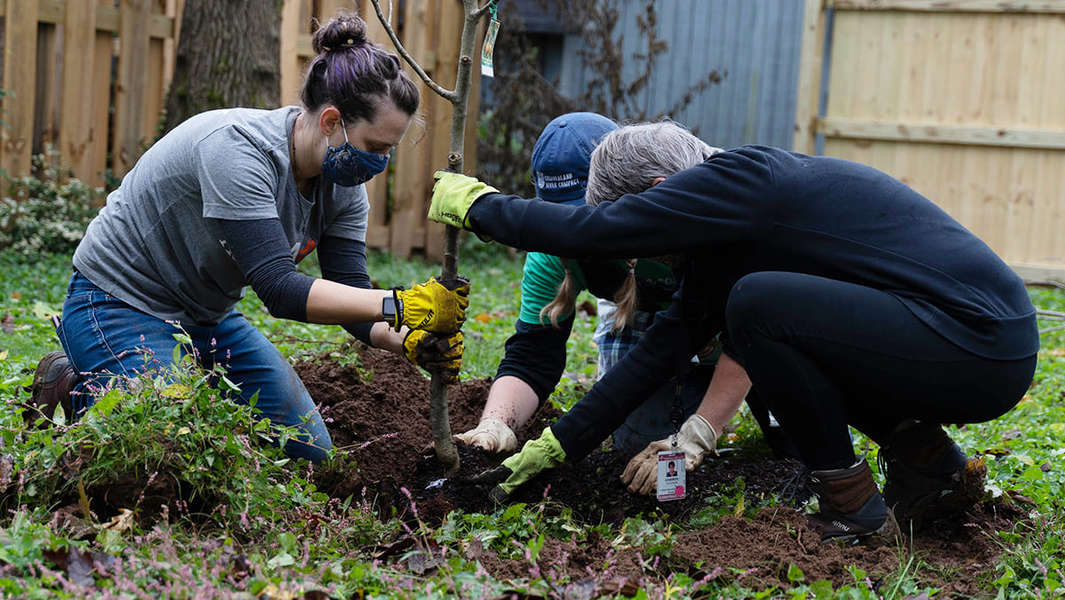 Here's How to Volunteer in Nashville This Holiday Season