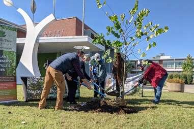 Nashville Tree Foundation