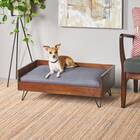 Mid Century Modern Dog Sofa
