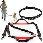 Hands Free Dog Leash Kit