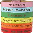 Personalized Collar