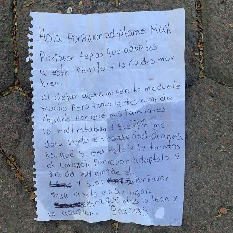 Letter left with abandoned dog in Mexico